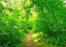 Thumbnail for the post titled: Ne rontsuk, ne nehezítsük egymás életét/Vigyázzunk környezetünkre